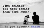 Some Animals are more Caring