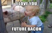 Future Bacon