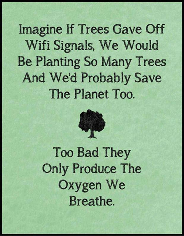 What if tree gives wifi signal