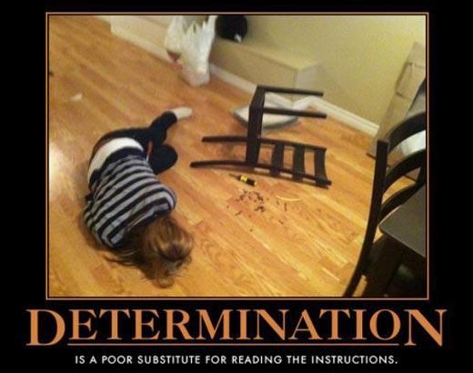 determination is the stupid things
