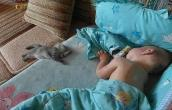 Cat and Kid Sleeping