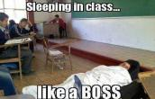 Sleeping like a BOSS