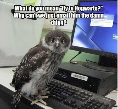 Fly to Hogwarts?