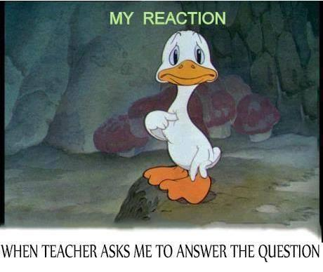 My Reaction when..
