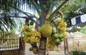 All in one