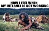 Internet is not working